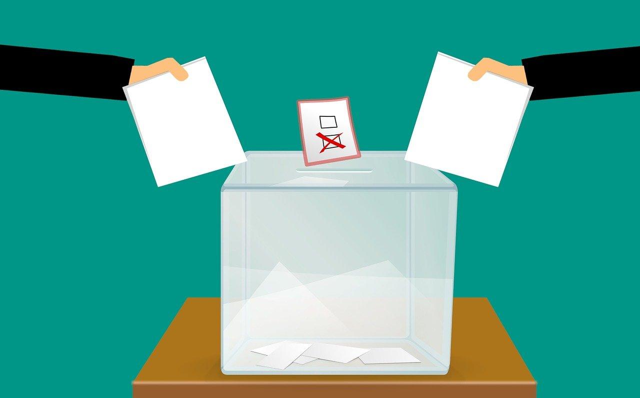vote, voting, voting ballot